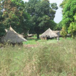 Village near Makurdi