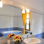 Blue and yellow rooms bathroom with bath, shower, double sink, bidet and toilet