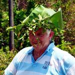 wer keine Kopfbedeckung hat, baut sich einfach eine aus Pflanzen, wie hier Robin Hood von Costa Rica