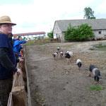 das Freilaufgehege der Fazenda
