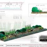 Progetto vincitore del concorso di idee per un'aiuola pubblica a Salerno