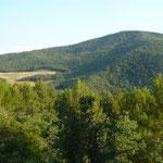 Panorama nei dintorni di Oppido Lucano (Pz)