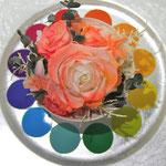 プリザーブドフラワーコンテスト「色相環」のレッド