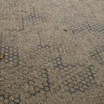 Sechs Monate nach dem Verlegen der Paddockplatten ist auch nach Regenwetter eine optimale Wasserableitung gewährleistet.