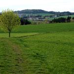 Rund um Bernhardswald ist traumhaftes Ausreitgelände