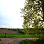 Ausritte auf tollen Wegen rund um Bernhardswald
