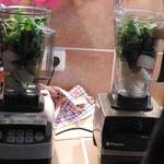 Obst, Salat und Wasser - was tun die nur zusammen in den Mixern?