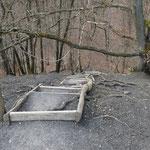 Treppe mit Baumwurzeln zum Kleinen Fuji