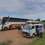 Die zwei Busse