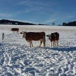 Sie geniessen das schöne Winterwetter