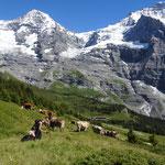 Imposannte Bergwelt