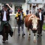 Drei Männer und eine Kuh