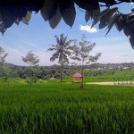 Land for sale by owner in North Lombok