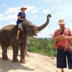 Ran Tong Elephant