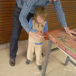 Papa hilft beim Sägen der Holzäste
