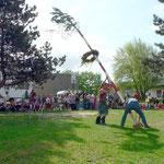 Der Höhepunkt des Festes war die Aufstellung des Maibaumes