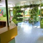 Aufenthaltsraum im JZH mit vielen Grünpflanzen dekoriert