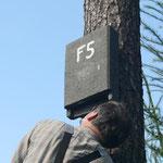 Kontrolle eines flachen Holzbetonkastens