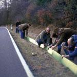Aufbau der Zäune