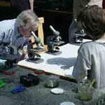 Jim Wilson beim Mikroskopieren.