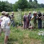 Bei der Wanderung bekamen wir auch den NABU-eigenen Weinberg gezeigt ...