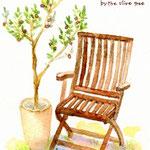 オリーブの木と陽だまりの午後