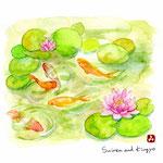 睡蓮と金魚