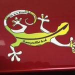 Sticker Margouillat sur une voiture La Réunion