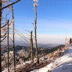 prachtige sneeuwplaatjes op de Hornisgrinde