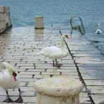 Зима в Хорватии