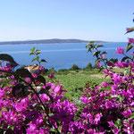 Апартамнты с видом на море Хвар, Завала, отдых с детьми
