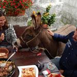 Гастро экскурсия в эко село, Далмация, Трогир, Сплит, Омиш Макарска.