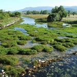 Источник реки Цетина. Хорватия.