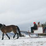 Отдых на Купресе. Конные прогулки. Босния и Герцеговина, всего 120 км от моря и Сплита, Хорватия.