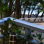 Апартаменты люкс Макарска Хорватия  первый ряд с видом на море