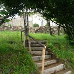 Escalier sous les châtaigniers