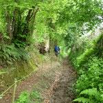 Circuit aprés-midi chemin sur Montpinchon (nomé chemin des lapins)