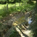 chemin commune de Dangy (parcours de pêche bord de Soulles)