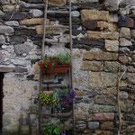 Côté jardin 1