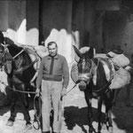 anni '60 Vito Trotta (zu Viti i tappi) con due muli in un vicolo del centro storico