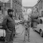 1978 - Domenico Corrado (foto G. Gianzi)