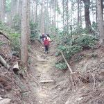 山道を歩く 菩提山山頂を目指す