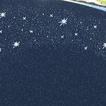 Sternenhimmel mit Swarowskis