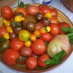 Tomatenstolz