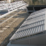 ORNITEC: effektive Voelabwehr an Industriegebäuden