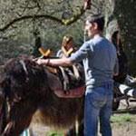 Mit einem Esel wandern