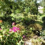 Im Garten vor der Ferienwohnung