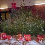 Tannenbaumgruppe Weihnachtsfeier