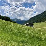 Padaun liegt sehr ruhig umgeben von Almwiesen.