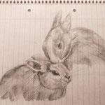 26.01.2011 - Bleistift auf Schulblock  ;-)